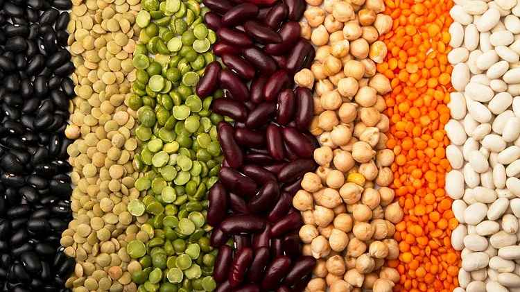 Protein enriched pulses