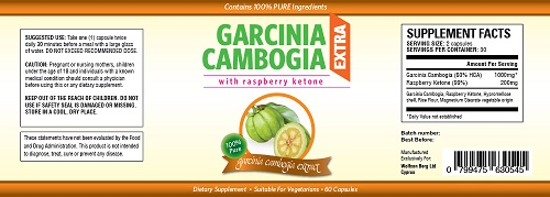 Garcinia Cambogia Extra Ingredients