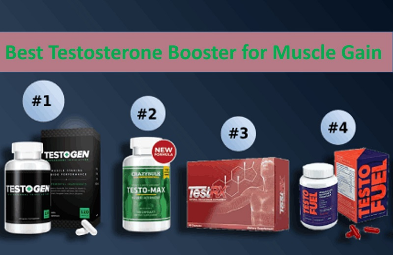 4 Effective Testosterone Booster to Increase Your T-Level Naturally