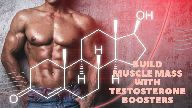 Build Muscle Mass With Testosterone Boosters [Most POPULAR Picks]