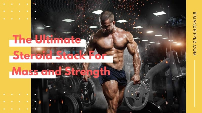 Best Steroid Stack for Mass and Strength By Crazy Bulk In 2020