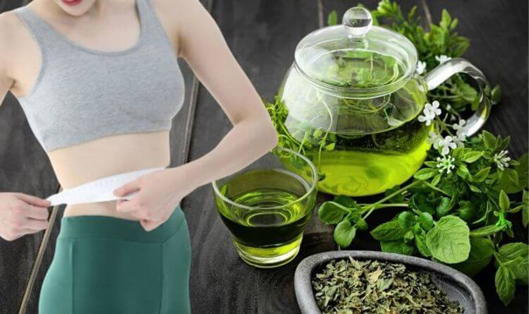 How Green Tea Extract Help You To Lose Weight?