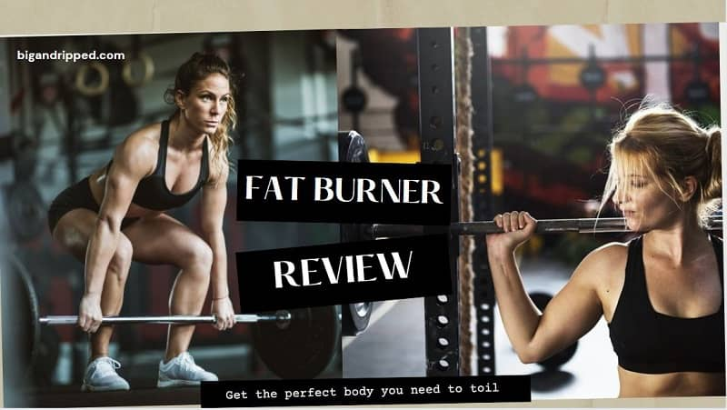 3 Best Fat Burner Review – Instant Knockout, Leanbean And Hourglass