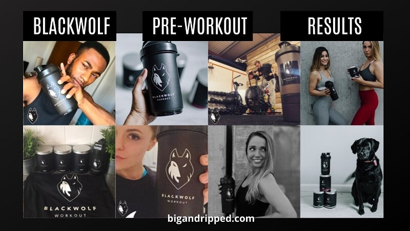 BlackWolf Pre Workout Results