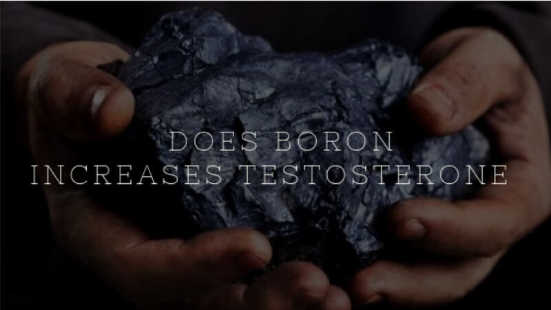Can Boron Boost Testosterone Levels?   Benefits And Dosage