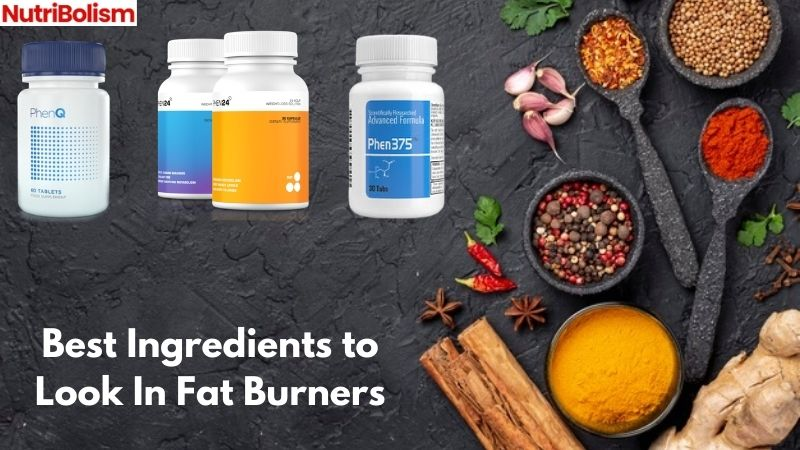 Ingredients That Makes The Best Fat Burner Supplement