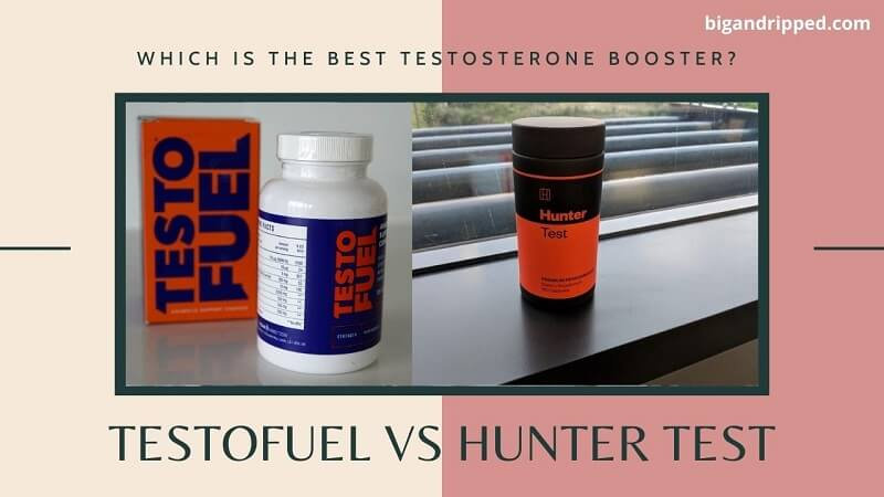 Which Testosterone Booster You Should Buy – TestoFuel Or Hunter Test?
