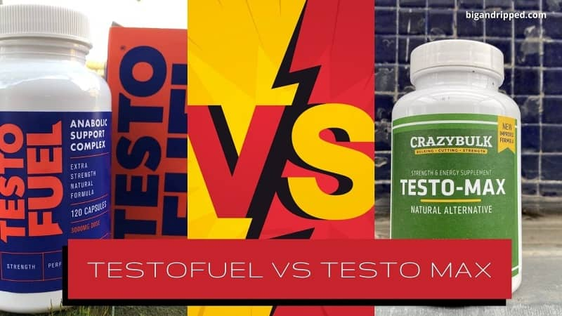 Which Is The Best Pill For Real Muscle Growth & T: Testo Max Or TestoFuel?
